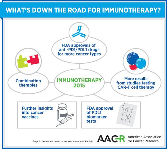 Ravoori_Fig_1_immunotherapy