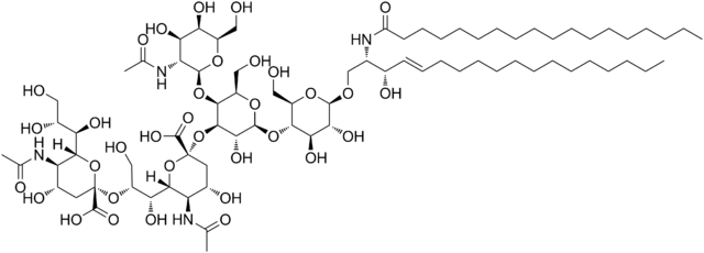 Chemical structure of GD2 ganglioside.