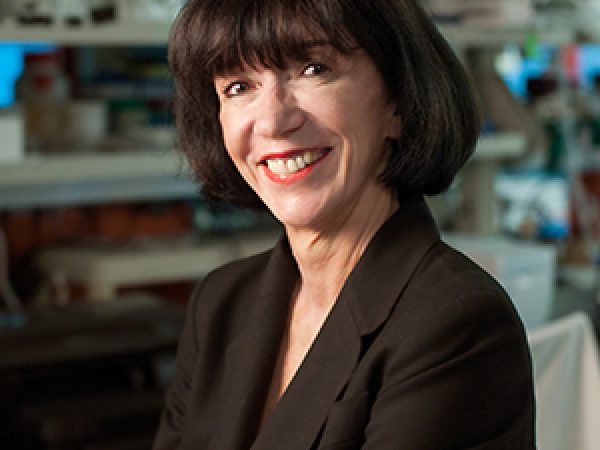 Q&A With Martine F. Roussel, PhD, on Advances in Brain Cancer Research