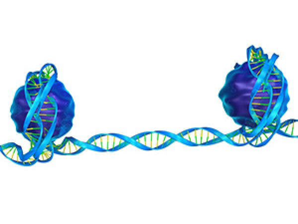 Catalyzing Progress in Epigenetics Research