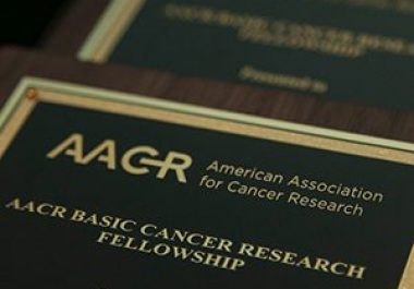 Another Successful Year for the AACR Grants Program