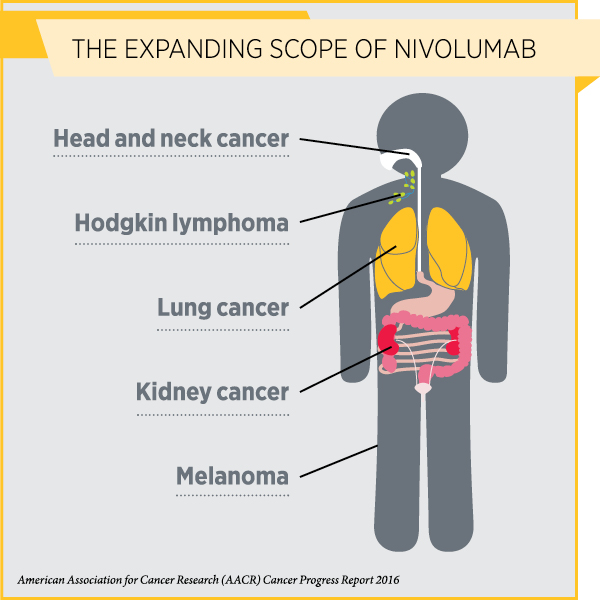 Use of Immunotherapeutic Expanded to Fifth Type of Cancer