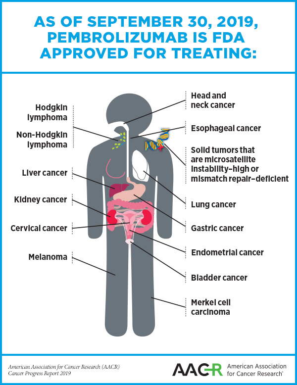 Pembrolizumab Use Expanded To 13th Cancer In Five Years Aacr Blog
