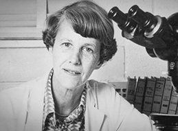 The AACR June L. Biedler Prize for Cancer Journalism
