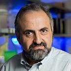 Dmitry I. Gabrilovich, MD, PhD