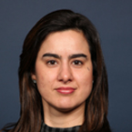 Carolina C. Gomes, DDS, PhD