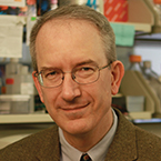 Louis M. Staudt, MD, PhD