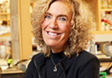 Elaine Fuchs, PhD, FAACR