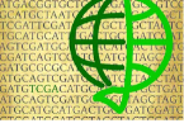 The Cancer Genome Atlas (TCGA) Founding Members and Current Project Team