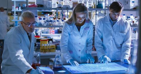 Establish a Research Fund