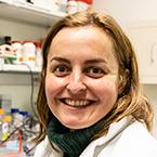 Maria Casanova-Acebes, PhD