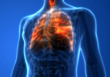 Microbes Found in the Lungs Are Linked with Worse Lung Cancer Outcomes