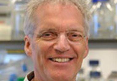 René Bernards, PhD