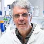 Olivier Delattre, MD, PhD