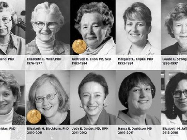 Celebrating Women in Cancer Science