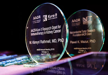 AACR-Kure It Partnership Makes Impact on Kidney Cancer