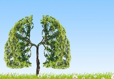 Spotlight on Small Cell Lung Cancer