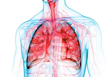 Looking Closely at Lung Cancer